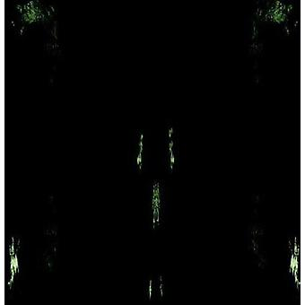 Impetuous Ritual - Unholy Congregation of Hypocritical Ambivalence [CD] USA import