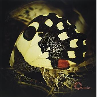 Ossicles - Music for Wastelands [Vinyl] USA import