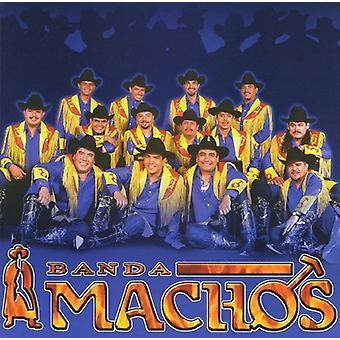 Banda Machos - Banda Machos [CD] USA import
