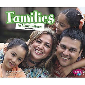Familles dans de nombreuses Cultures (la vie dans le monde entier)