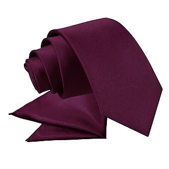 Plum platte satijnen stropdas & zak plein voor jongens instellen