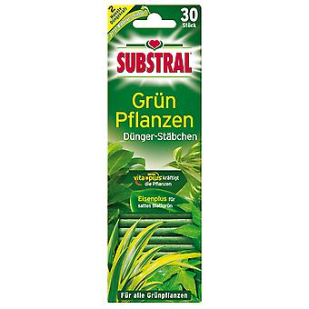SUBSTRAL® fertilizer sticks for green plants, 30 pieces