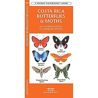 Costa Rica Butterflies & Moths: An Introduction to Familiar Species (Pocket Naturalist)