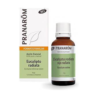 Eucalyptus Radiata Bio Essential Oil 30 ml