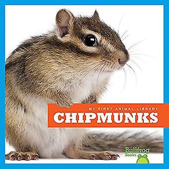 Chipmunks (My First Animal Library)