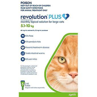 Revolution Plus kissa suuri kissa 6pk 5-10kg