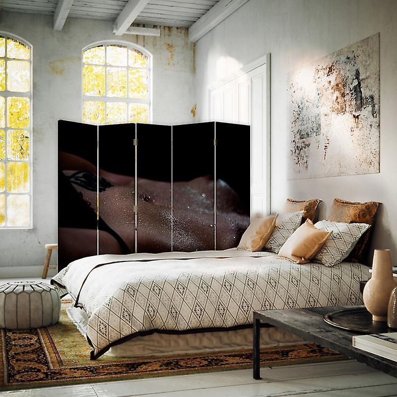 Diviseur de chambre, 5 panneaux, Double-Sided, toile, fille nue dans les ombres