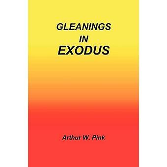 Gleanings in Exodus by Pink & Arthur W.