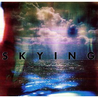 Horrors - Skying [Vinyl] USA import