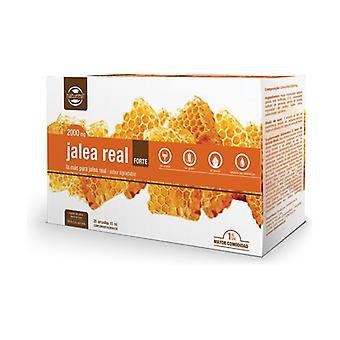 Royal Jelly Forte 20 ampoules of 15ml