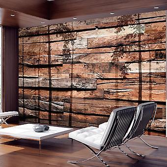 Papel de parede do efeito de madeira - Sombra da Floresta
