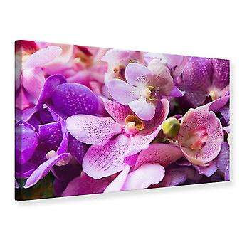 Leinwand drucken Orchideen-Paradies