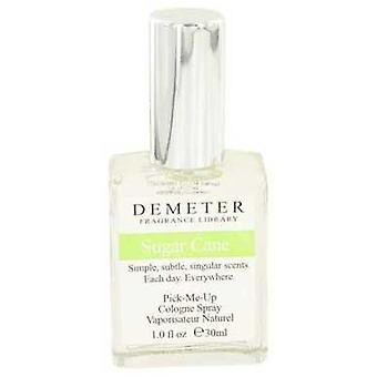 Demeter Sugar Cane By Demeter Cologne Spray 1 Oz (women) V728-434874