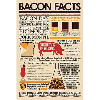 Affiche - Bacon Facts 24