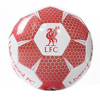 Liverpool FC Vortex storlek 1 mini Ball