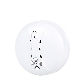 Home Security Fire Alarm System