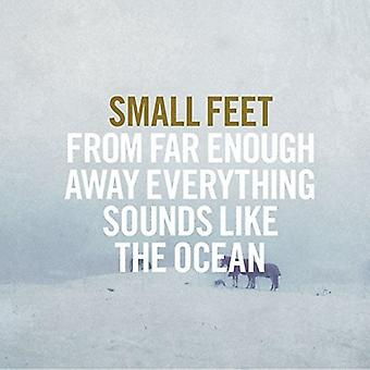 Small Feet - From Far Enough Away Everything Sounds L [Vinyl] USA import