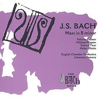J.S. Bach - J.S. Bach: Mass in B Minor [CD] USA import
