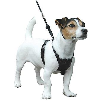 Company of Animals Non-Pull Harness Dogs, Puppy Training,