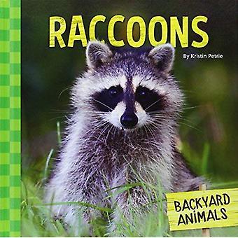 Raccoons (Backyard Animals)