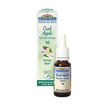 Organic Wild Apple Tree 20 ml of floral elixir