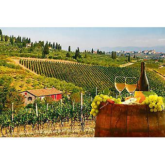 Kuva seinämaalaus valkoviini tynnyrillä viinitarhassa Chiantissa (Toscana, Italia)