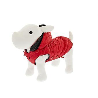 פריביאלה מוסקה מעיל גשם (כלבים, בגדי כלב, מעילים וגלימות)