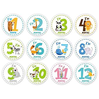 Baby Milestone Stickers, Monthly Photo Picture Props For Or, Infant Onesie