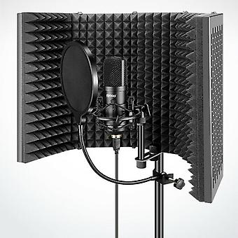 Recording Mic Filter Vocal Booth For Recording