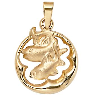 Zodiac pendant Zodiac fish 375 partially frosted gold yellow gold