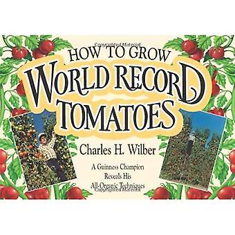Come coltivare pomodori Record mondiale: un campione di Guinness rivela i suoi segreti tutto-organici
