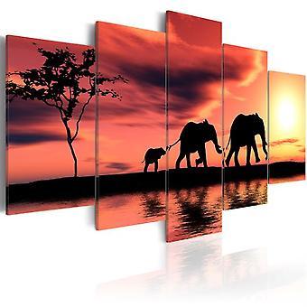 Artgeist قماش طباعة الأفارقة عائلة الفيلة