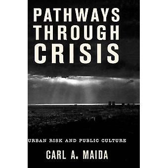 Pathways Through Crisis Urban Risk and Public Culture by Maida & Carl A.