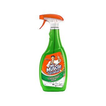 Mr Muscle Advanced Power Window 750ml Trigger Spray