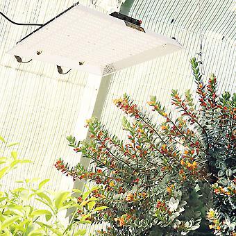 TS 2000W LED Grow Light Dimmable pour intérieur High Ppfd Veg Flower Lamp Silencieux