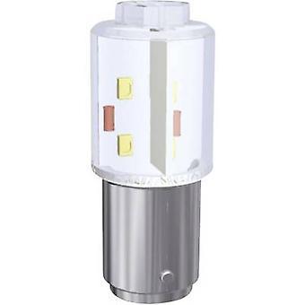 Signaali konstruktio LED-merkki valo BA15D lämmin valkoinen 24 V DC, 24 V AC 14000 MLM MBRD150854