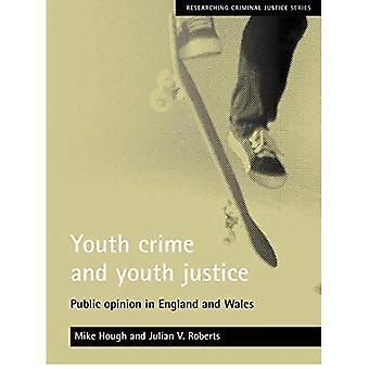 Délinquance juvénile et la Justice pour les jeunes: l'Opinion publique en Angleterre et au pays de Galles (recherches sur la Justice pénale)