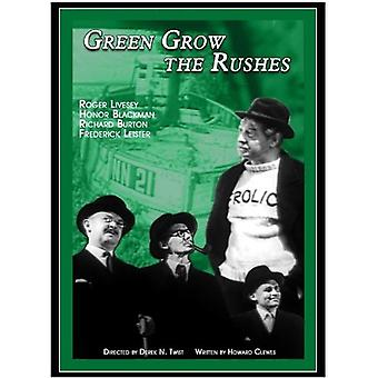 Green Grow the Rushes [DVD] USA import