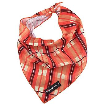 Oui Oui Frenchie Bandana - Fall Pläd
