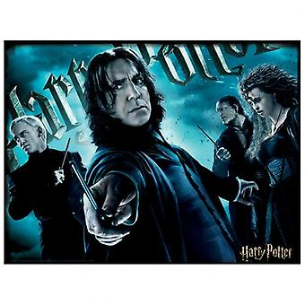 Harry Potter 3D Image Puzzle 500pc Slytherin