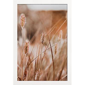 JUNIQE Print - An English Walk - Bladeren & Planten Poster in Crème Wit & Oranje