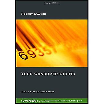 Your Consumer Rights: Effective Complaining (Pocket Lawyer)