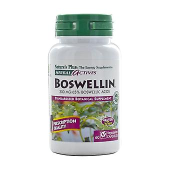 Boswellia 60 capsules of 300mg