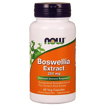 Now Foods Boswellia Extract 250 mg 60 Capsules