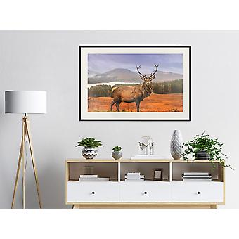 Poster - Majestic Deer-90x60