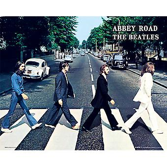Beatles Abbey Road Mini plakat 40x50cm