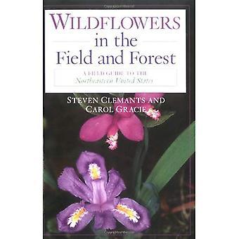 Wildblumen in Feld und Wald: A Field Guide zum Nordosten der Vereinigten Staaten: ein Leitfaden für Wildblumen der Nordosten der Vereinigten Staaten... Kanada (Schmetterlinge durch Binokel)