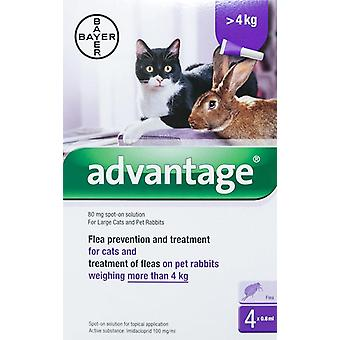 Advantage Purple Cats Over 8.8lbs (4kg) - 4 Pack