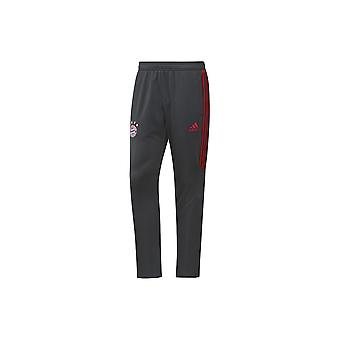 Pantaloni da calcio Adidas Performance Training Bayern Monaco BP8252