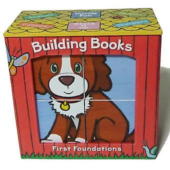 Building Books - First Foundations - Book 1 by Gill McLean - 9780993307
